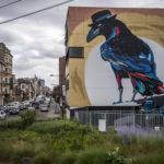 Sozyone // Brussels Corvus Corone © Eric Danhier