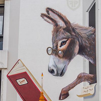Alexis Corrand // L'âne à l'école © Eric Danhier